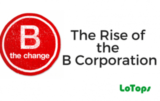 The Rise of the B Corporation